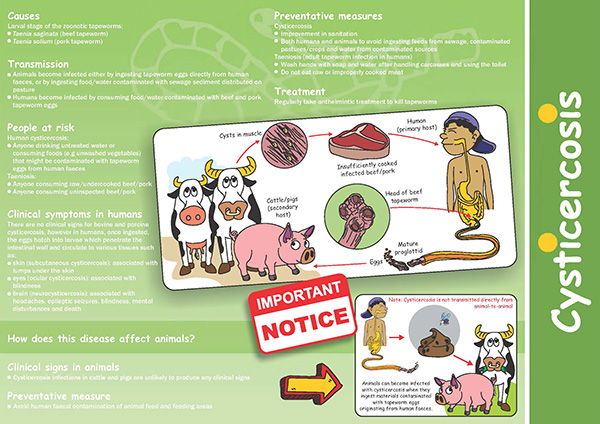 Cysticercosis brochure