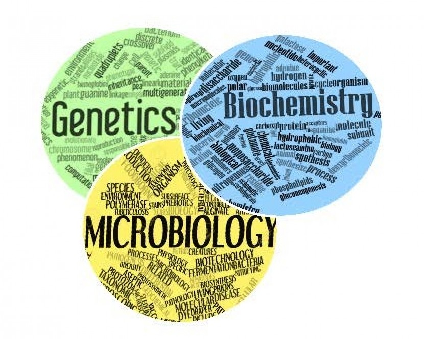 New HoD for Biochemistry, Genetics and Microbiology